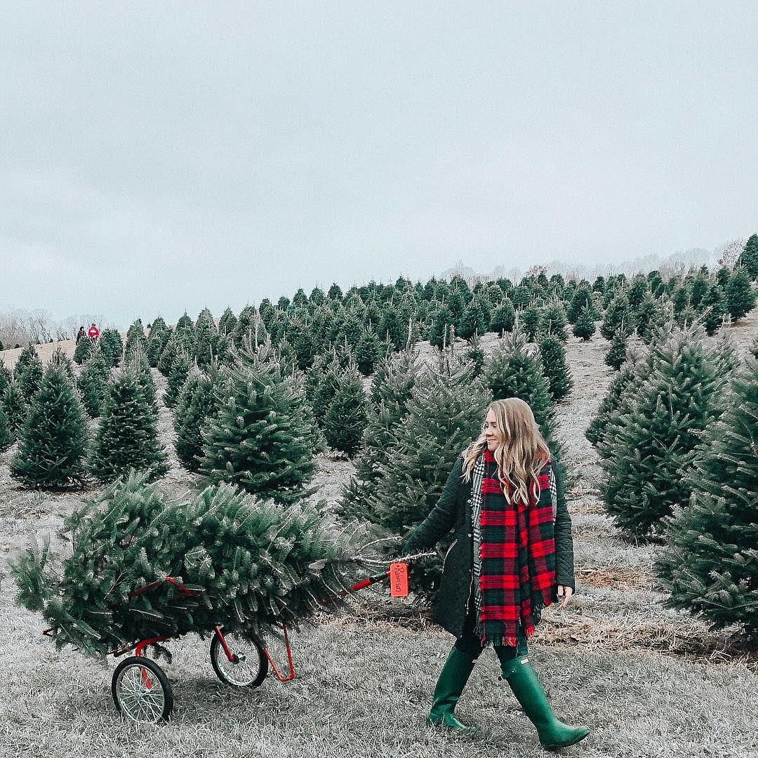 ideas-to-make-your-christmas-tree-much-more-beautiful-2019
